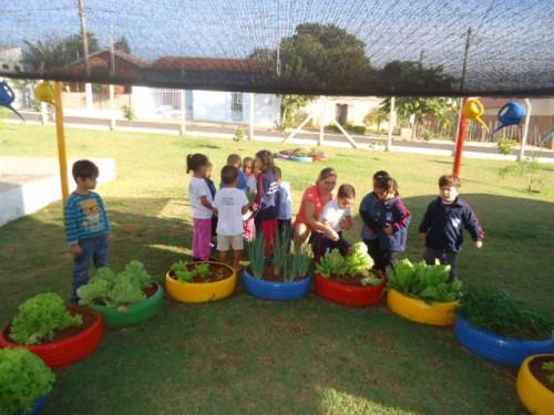 horta e jardim em pneus : horta e jardim em pneus: Ceim Cecília Meireles cultiva jardim e horta em pneus / 23/07/2014