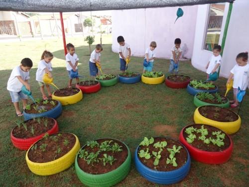 horta e jardim em pneus : horta e jardim em pneus:Alunos do Ceim Cecília Meireles cultivam jardim e horta em pneus